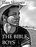img - for The Bible Boys book / textbook / text book