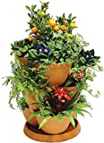 Self Watering TERRACOTTA coloured UV resistant plastic Plant & Flower Pots - Set of 3 Stackable MEDIUM Planter Tubs with Tray (Flowers not included)