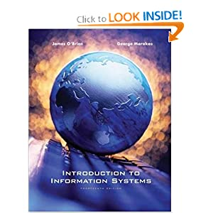 Introduction to Information Systems book