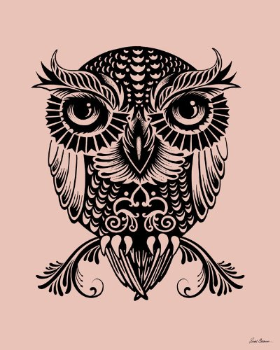 Wheatpaste Art Collective Egyptian Owl Stretched Canvas Wall Art by Rachel Caldwell, 24-Inch by 30-Inch