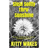 Steal Softly Thru' Sunshine: the story of Orinoco Pony and his Dandelion Adventuresby Kitty Wakes