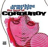 echange, troc Corduroy - Something in My Eye: Best of Corduroy