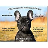 """Blechschild / Warnschild / Fun Türschild - """"Willkommen in meinem Zuhause"""" - Motiv: Französische Bulldogge -- 01"""