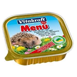 Information About Hedgehog