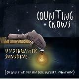 Underwater Sunshine [Vinyl LP]
