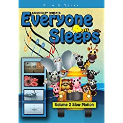 Everyone Sleeps - Volume 2 - Slow Motion The Magical Journey