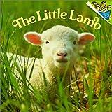The Little Lamb (Random House Picturebacks) (0613260260) by Dunn, Judy