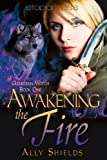 Awakening the Fire (Guardian Witch) by Ally Shields