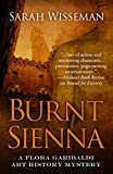 img - for Burnt Siena book / textbook / text book