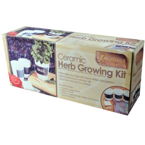 Ceramic Herb Grow Pots - Grow Your Own Herbs