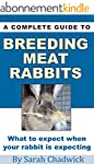 A Complete Guide to Breeding Meat Rab...