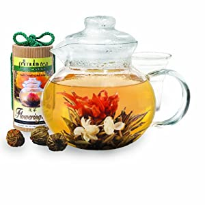 Primula 40-Ounce Glass Teapot with Infuser and Lid with 12 Flowering Teas in a Canister