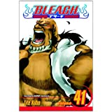 Bleach, Vol. 41