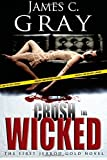 img - for Crush The Wicked: The First Jerrod Gold Novel (Volume 1) book / textbook / text book