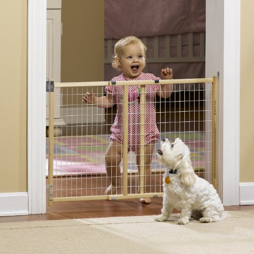 GMI GuardMaster II Standard Wire Mesh Swing Gate