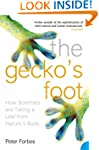 The Gecko's Foot: How Scientists are...
