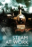 echange, troc Steam at Work [Import anglais]