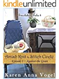Amish Knit & Stitch Circle ~ Book 3~ Against the Grain (Smicksburg Tales 4 Series) (English Edition)