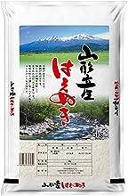 Rice Yamagata prefecture rice Haenuki 5kg 26 annual production