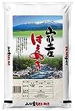 【精米】山形県 白米 はえぬき  5kg 26年産