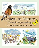 img - for By Clare Walker Leslie Drawn to Nature: Through the Journals of Clare Walker Leslie (First Edition) book / textbook / text book