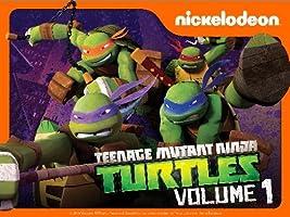 Teenage Mutant Ninja Turtles Volume 1 [HD]