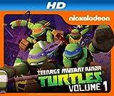 Teenage Mutant Ninja Turtles HD (AIV)
