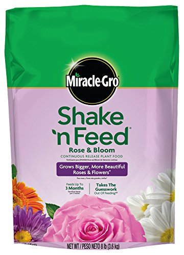 Miracle-Gro Shake 'n Feed Continuous Release Rose and Bloom Plant Food, 8-Pound (Slow Release Plant Fertilizer) (Fertilizer Slow Release compare prices)