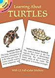 Learning About Turtles (Dover Little Activity Books)