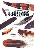 日本の野鳥 羽根図鑑