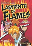echange, troc Labyrinth of Flames [Import USA Zone 1]