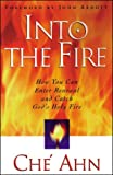 img - for Into the Fire: How You Can Enter Renewal and Catch God's Holy Fire book / textbook / text book