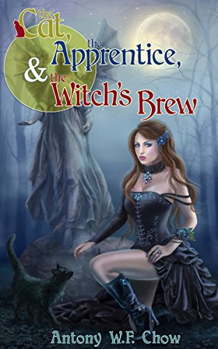 the-cat-the-apprentice-the-witchs-brew-a-fantasy-short-story-english-edition