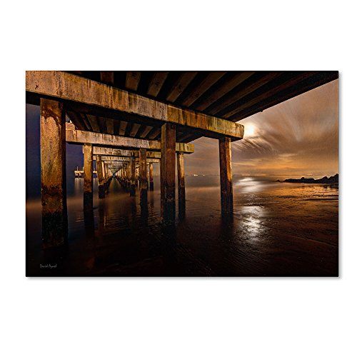 Trademark Fine Art Coney Island - Brooklyn, Ny Ii By David Ayash Wall Decor, 22 By 32-Inch front-45763