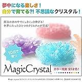 マジッククリスタル  【シーグリーン】 10日で育つ不思議なクリスタル