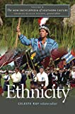 img - for The New Encyclopedia of Southern Culture: Volume 6: Ethnicity (v. 6) book / textbook / text book