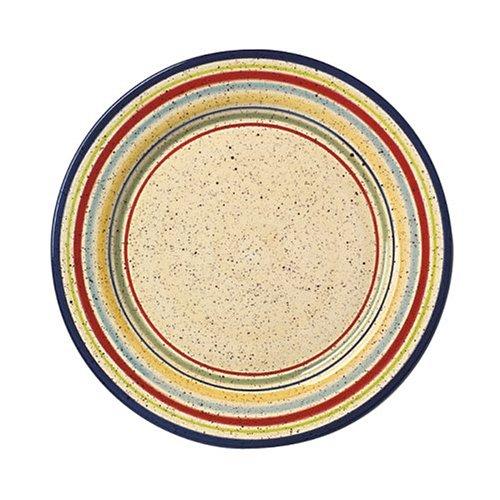 pfaltzgraff-sedona-dinner-plate