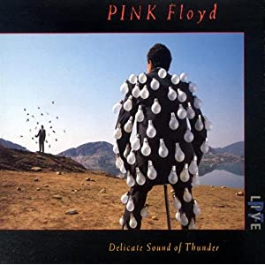 Pink Floyd -  Delicate Sound of Thunder (Disc 1)