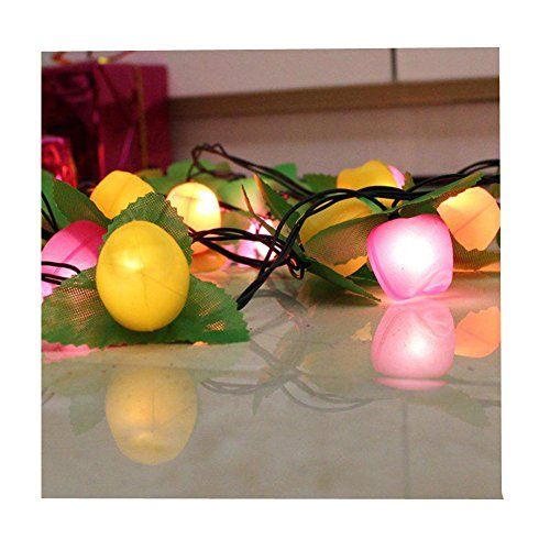 jspoir-melodiz-3m-fruit-shape-multicolour-led-string-light-christmas-tree-pendant-ornaments-christma