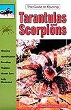 Wayne Rankin Tarantulas and Scorpions