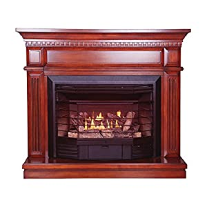 Kozy World, GFD2360KD, Carlton Gas Fireplace, Vent-Free, Dual Fuel, Four-In-One