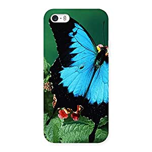 Special Butterfly on Plant Back Case Cover for iPhone SE