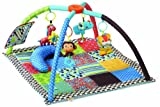 Infantino Twist and Fold Activity Gym, Vintage Boy
