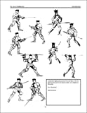 Arte Gladiatoria Dimicandi: 15th Century Swordsmanship of Master Fillipo Vadi
