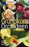 Grundkurs Orchideen: Arten - Pflege - Vermehrung