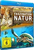 Image de Faszination Natur - Wunder Unseres Planeten [Blu-ray]