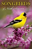 img - for Songbirds of North America 2015 Weekly Engagement Calendar book / textbook / text book