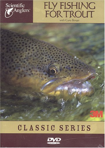 Rockbridge mill ozark county missouri our recent visit for Fly fishing for dummies