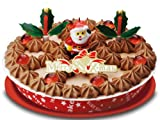 【送料込】2011沖縄のブルーシールクリスマスチョコレートアイスケーキ