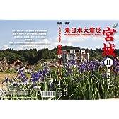 東日本大震災 宮城2 [DVD]